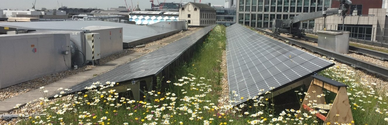 Biosolar Green Roofs