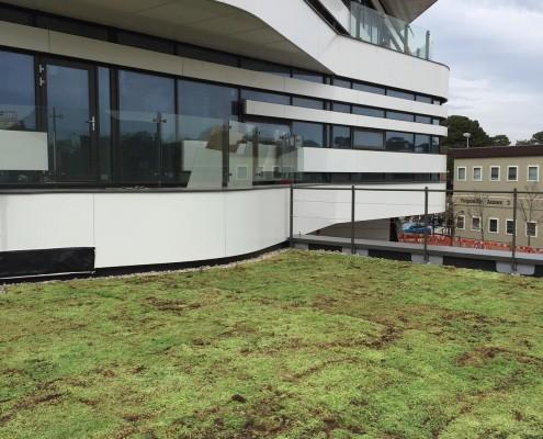 Re-greening academia at Bournemouth Uni