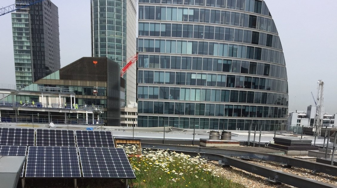 City Centre office green roof and solar panels