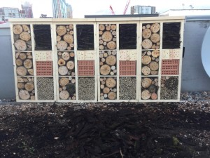 Insect hotel in central London