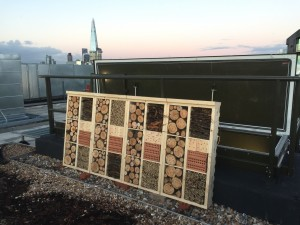 Insect hotel in central London with back-drop of The Shard