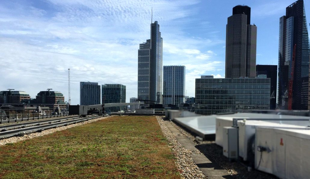 Green roofs and roof gardens