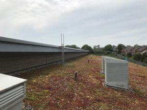 Avoid green roof remedial work
