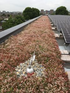 Bio-solar roof to benefit Social Housing