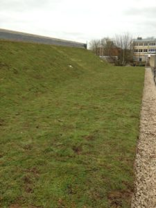 pitched green roof in Bradford on Avon