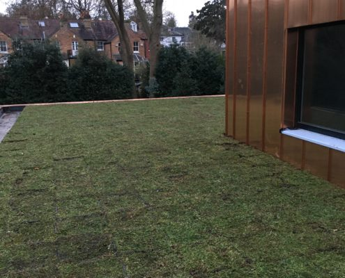modular system green roof