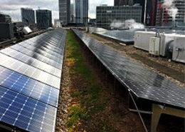 bio solar green roof
